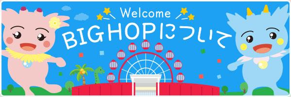 BIG HOP について