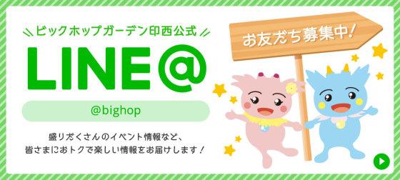 BIG HOP LINE@お友達募集中!