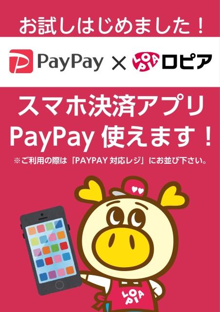 ロピアで「PayPay」お試しはじめました!